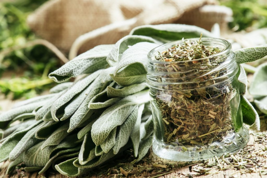 Health and Herbs - sage