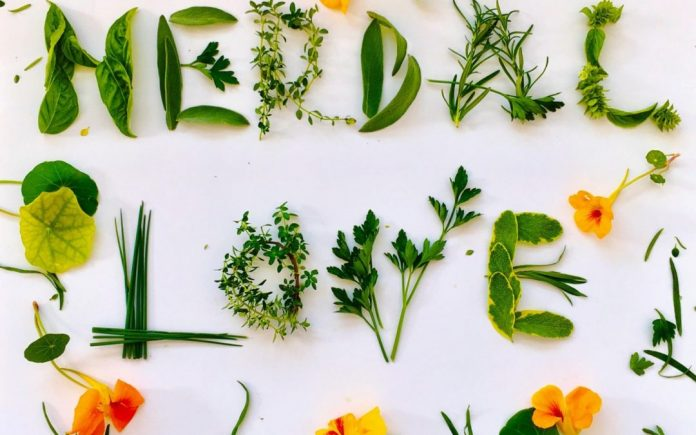 Herbs can be essential for promoting health and preventing illnesses